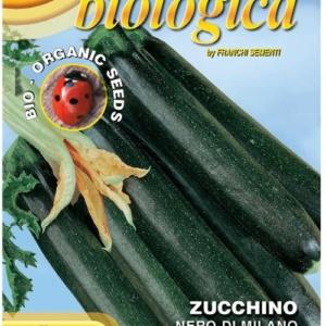 Zucchino Bio Nero di Milano
